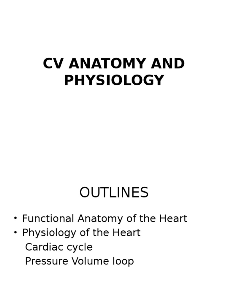Cv Anatomy and Physiology | Muscle Contraction | Heart