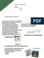Ecosistemas Terrestres Guia 12