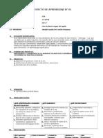 PROYECTO DE APRENDIZAJE I.E 22762.docx