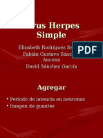 Virus Herpes Simple.ppt