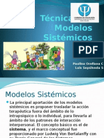 Técnicas de Modelos Sistémicos (1)