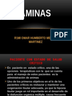 AMINAS PRESENTACION