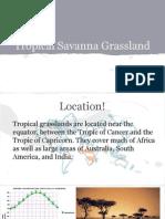 Tropical Savanna.pdf
