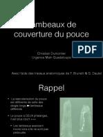 Lambeaux Du Pouce-cours Revol