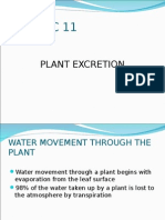 PLANT EXCRETION.ppt