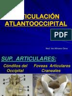 Art Atlantooccipital y Axoidea