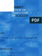 Project Review on Production of Acrolein 2