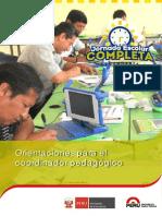 002_Orientaciones_para_coordinador_pedagogico.pdf