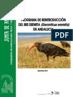 Memoria del Programa Reintroducción del Ibis Eremita en Andalucia
