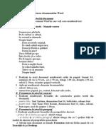 Fișă de Lucru - Formatarea Unui Document Word