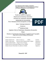 Abdellaoui Radia.pdf