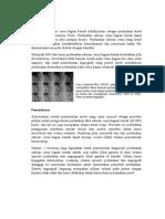 Angiography Lower GI(1)
