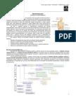 Neurofisiologia -Med Resumos