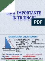 Linii Importante in Triunghi-recapitulare