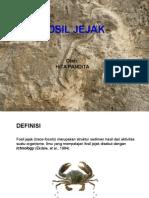paleontologi fosil jejak 13.ppt