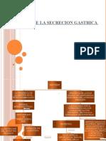 INHIBICION DE LA SECRECION GASTRICA.pptx