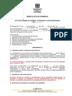 Modelo Acta Asamblea 1