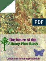 Save the Pine Bush Dinner Powerpoint - January 2015
