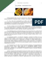 Células Madre - Valoración Ética (PDF)