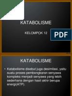 KATABOLISME