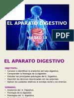 Ud 12 El Aparato Digestivo