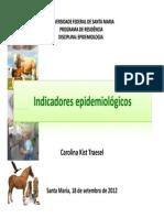 1 - Indicadores Epidemiolgicos - Carolina Traesel