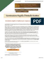 Peperoncini - Germinazione Metodo Scottex