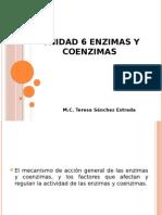 UNIDAD 6ENZIMAS Y COENZIMAS.pptx