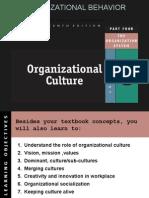 Organizational Culture 2
