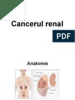 cancere_urologice