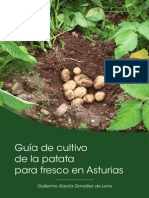 Guía de cultivo de la patata para fresco en Asturias