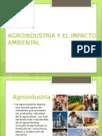 Agroindustria y El Impacto Ambiental