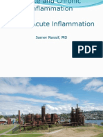 Acute and Chronic Inflammation 1- Acute Inflammation
