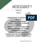 90787-Tema 3 Funcion Publica