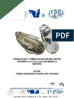 PRODUCCION Y COMERCIALIZACION DEL OSTION JAPONES (Crassostrea gigas) EN BAHIA LA VENTOSA.