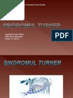 Sindromul Turner.ppt