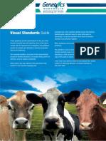 GA Visual Standards Guide