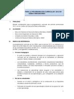 Orientaciones Programación Curricular 2012 de Ceba Innovador