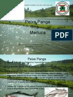 Peixe Panga.pptx