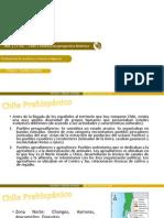 Chile y América Histórica - Persistencia de Pueblos Indígenas