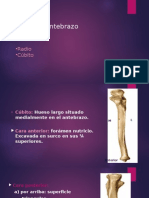 huesos antebrazo y mano.pptx