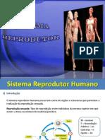 aulas de fisiologia humana