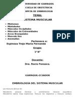 Embriologia Sistema Muscular
