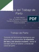 Fisiología Del Trabajo de Parto (NXPowerLite)
