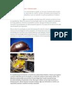 introduccioncienciaytecnologia-110616164343-phpapp02.docx