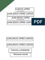 Jesus Lopez Loayza