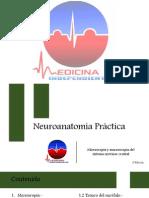 Neuroanatomía Práctica.