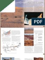 006depozite cuaternare.pdf