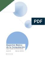 Aspectos Basicos de La Computacion