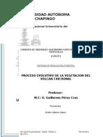 Reporte Del Volcan Chichonal